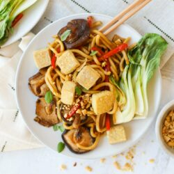 Vegan Udon Noodles with Spicy Sauce
