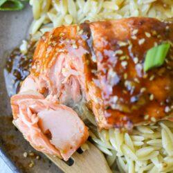 Pan Seared Teriyaki Salmon- Healthyish Foods